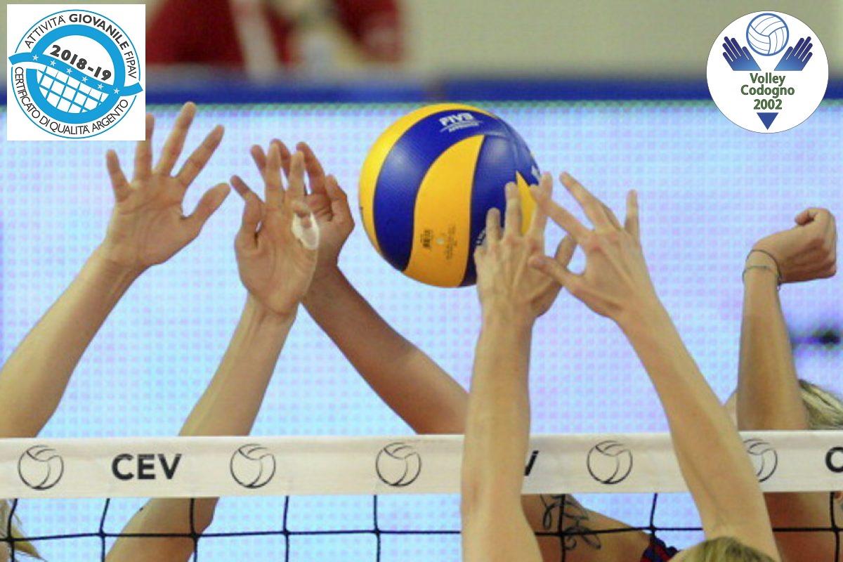 header-volley2018-19