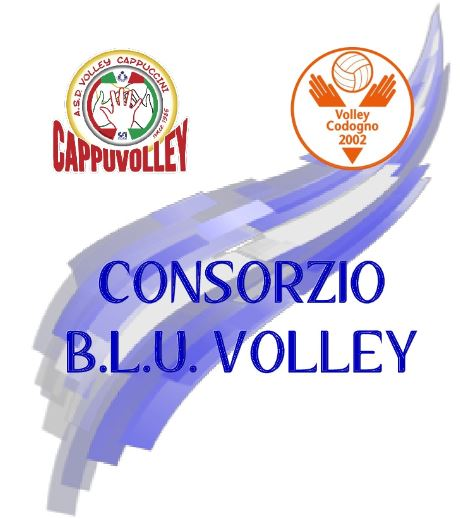 blu-volley